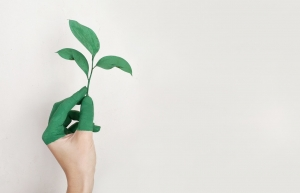 The Top Benefits of Building Green